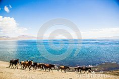 Beautiful Song Kol- Kirghistan mountains