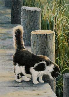 1 Tumblr  My Love For Kitty Cats  Pinterest  Obras de teatro