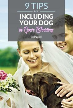 "Sunday's Recap: Including Your Dog In Your Wedding - Top Dog Tips. Including your dog in your wedding can make your day even more special. For many couples, their pet is their first ""baby."" #dog #wedding #include #pets #dogs #animals #weddings #tips #how"