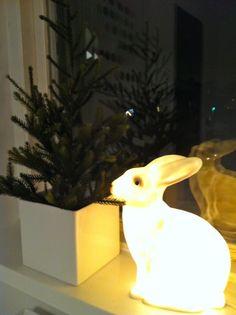 Bunny night light #bunnyinthewindow