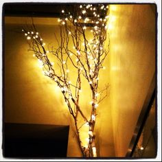 Tree branches wrapped with Christmas lights in a vase. Perfect for the bedroom.