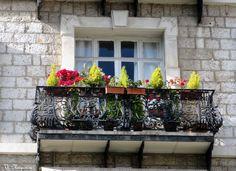Nice, Provence-Alpes-Côte d'Azur, France,  janelas, fenêtres, windows,  foto de Véva Nogueira
