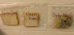 Teacher's Genius Bread Lesson Shows Kids The Importance of Washing Hands – Bored Teachers