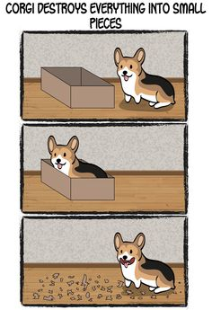 Corgi Logic - Corgi Destroys Everything by HenriSkunk on deviantART  (THIS is absolutely true... )