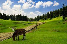 Utp India Toure & Travels এর সথ Yusmarg দখন