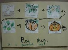 Pumpkin Flow Map
