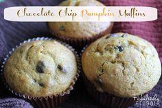 Chocolate Chip Pumpkin Muffin recipe. I love everything pumpkin. These are soooo much better than a box mix and super simple too!    #pumpkin #pumpkinrecipe #muffin