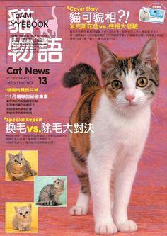 Cat Magazine - China