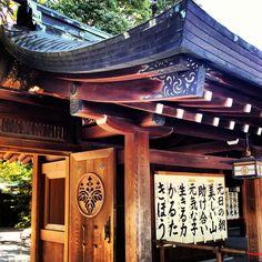 Meiji Shrine in Harajuku. Japan