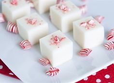 Candy Cane Martini Jelly Shots    A festive vodka-based jelly shot featuring peppermint schnapps and white chocolate liqueur in a creamy base.