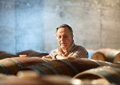 La Ruta del Vino Ribera del Guadiana busca anfitriones http://www.vinetur.com/2013030811774/la-ruta-del-vino-ribera-del-guadiana-busca-anfitriones.html