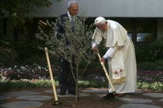 Pope Benedict XVI plants an olive tree in Jerusalem with President Shimon Peres.  Just a regular guy too, wonder why the media didn't notice.