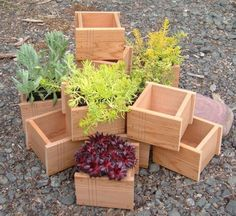 Japanese-style Western Red Cedar 4in. Planter Box