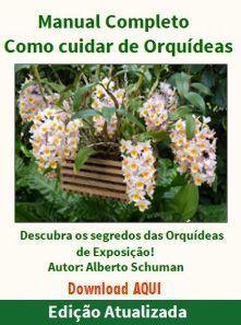 Manual Completo de Como Cuidar de Orquideas