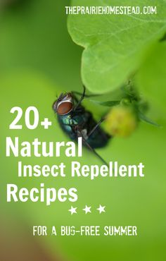 20+ Natural DIY Bug Spray recipes--for you and your garden!