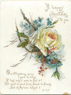 Vintage Christmas Roses