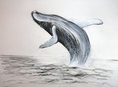 Humpback whale by Manukahoney7 on deviantART