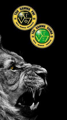 Tree Wallpaper Iphone, Army Wallpaper, Black Wallpaper, Sigma Logo, Tau Gamma, Lion Images, Juventus Logo, Ios, Fraternity