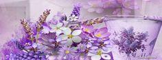 Lavender Lovely Lavender - Flowers Wallpaper ID 1708461 - Desktop Nexus Nature Facebook Cover Photos Vintage, Facebook Timeline Photos, Cover Pics For Facebook, Facebook Timeline Covers, Spring Cover Photos, Cool Cover Photos, Cover Picture, Cover Wallpaper, Background Hd Wallpaper