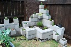 Cinder blocks!  What a great idea for a living wall!  Just turn them sideways and stack.  C a y l a w r a l: Cinder block garden from start to finish