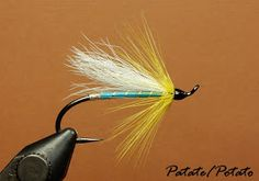 Abbey Almost Arndilly Fancy Artillery Atherton Squirrel Tail Autumn Twilight Barr Fly . Squirrel Tail, Black Squirrel, Fly Tying Patterns, Fish Patterns, Salmon Fishing, Trout Fishing, Hair Wings, Fishing Bait, Fishing Tips
