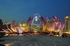 Lotus da cidade de Wujin, - Pesquisa Google