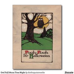 Owl Full Moon Tree Night Postcard