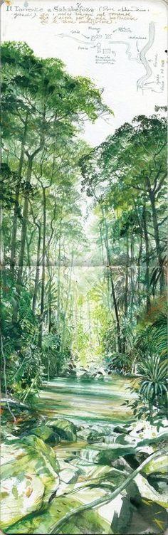 Stefano Faravelli - Verde Stupore Madagascar; Acquerello su Moleskine; Cm42x13; 2014