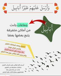 Quran Tafseer, Religion, Words, God, Religious Education, Horse