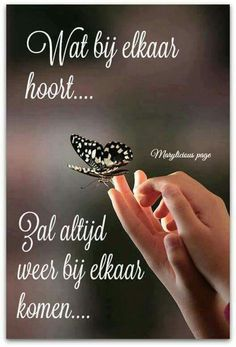 Wat bij elkaar hoort ... Quotes Gif, Wise Quotes, Qoutes, Inspirational Quotes, Comfort Quotes, Dutch Quotes, Cool Writing, Thats The Way, Verse