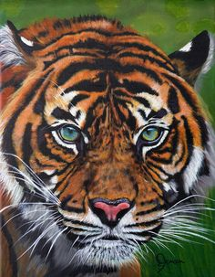 Realistic Paintings, Acrylic Paintings, Types Of Animals, Love Painting, Wildlife Art, Beautiful Children, Pet Portraits, Chihuahua, Original Artwork