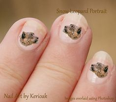 Snow Leopard, big cat, wild animal, Set of 24 Cat Nail Art Stickers Decals Cat Nail Art, Cat Nails, Bumble Bee Wings, Bumble Bees, Bee Invitations, Invite, Bee Party, Nail Art Stickers, Love Bugs