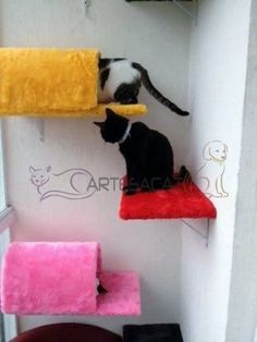 Prateleira Com Toca Para Gatos - R$ 84,90