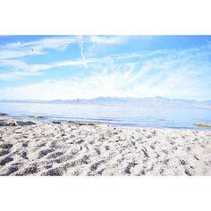 Caliparks : Salton Sea State Recreation Area Sea State, Salton Sea, Local Parks, Park Photos, Park City, Regional, Bucket, California, Beach