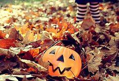 Halloween, pumpkin, and autumn afbeelding