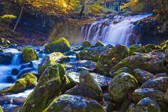 <蓼科大滝の紅葉>蓼科の紅葉は、毎年10月中旬~下旬が見頃。