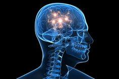 Galaxies and Human Brain