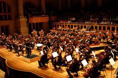 A Orquestra Filarmônica dos Médicos do Hospital Israelita Albert Einstein, regida pelo Maestro Nasari Campos, comemora 25 anos com um concerto especial.