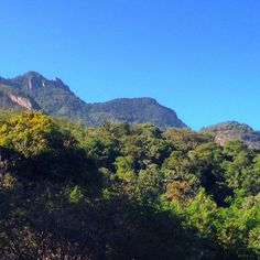 Floresta da Tijuca vista à partir da Estrada do Pau Ferro.