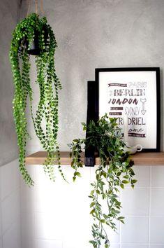 Blog   Mijn planten geheim  In deze blog ga ik jullie verklappen wat mijn planten geheim is. Kom gauw lezen! #planten #plants #hangplanten #kamerplanten #plantstyling #groeninhuis #urbanjungle #plantblogger #badkamer #bathroom Calathea, Ficus, Bathroom Inspiration, Interior Inspiration, Leafy Plants, Decoupage, Wall Desk, Scandi Style, My Room