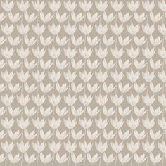 tulipes blanches sur beige