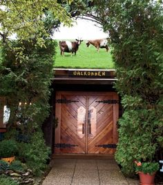 A favorite place to eat In Door County: Al Johnson's.  Make sure you look to see the goats grazing on the roof!