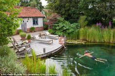 Image result for swimming pond