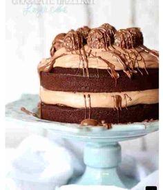 Chocolate Hazelnut Cake. Ferrero Roche to top