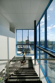 East Burwood RSPCA facility, Melbourne designed by Bamford Architects. Photography by Peter Hyatt.