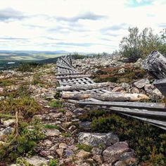Oliskohan Levillä kaunis ruska? 🍁🍃 #syksytulee #autumn #levi #levitunturi #jääkausireitti #levipanorama #naturelovers #hiking #adventuresahead #patikkaretki #suomiretki #luontoonfi #finnishmoments #finnishnature #tunturissa