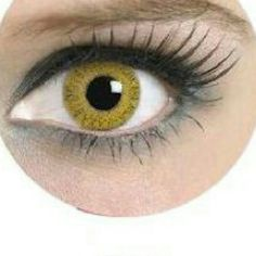 d5796f805289 Honey Yellow 2tone Circle Lens Contacts Honey Yellow 2 Tone Circle Lens Big  Apple 12 months