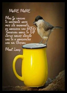 Morning Greetings Quotes, Morning Messages, Good Morning Wishes, Good Morning Quotes, Lekker Dag, Evening Greetings, Soul Songs, Afrikaanse Quotes, Morning Inspirational Quotes