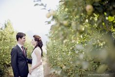 Apple orchard wedding in Ceres, South Africa