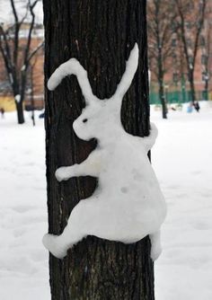 A snow bunny : )